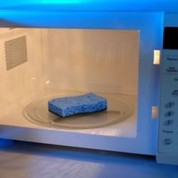 Clean your sponge