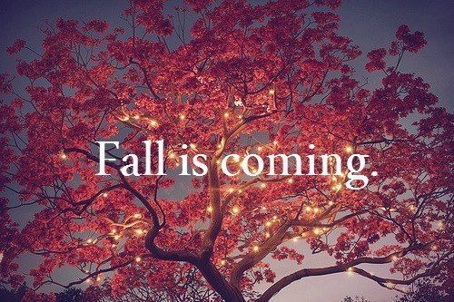 Adventures in Home Owning: Preparing your Home for Fall
